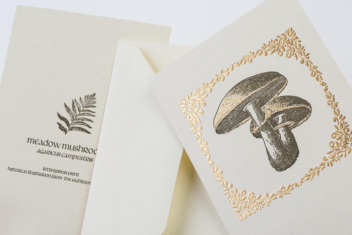 Letterpress double cards envelopes hot bronze foil