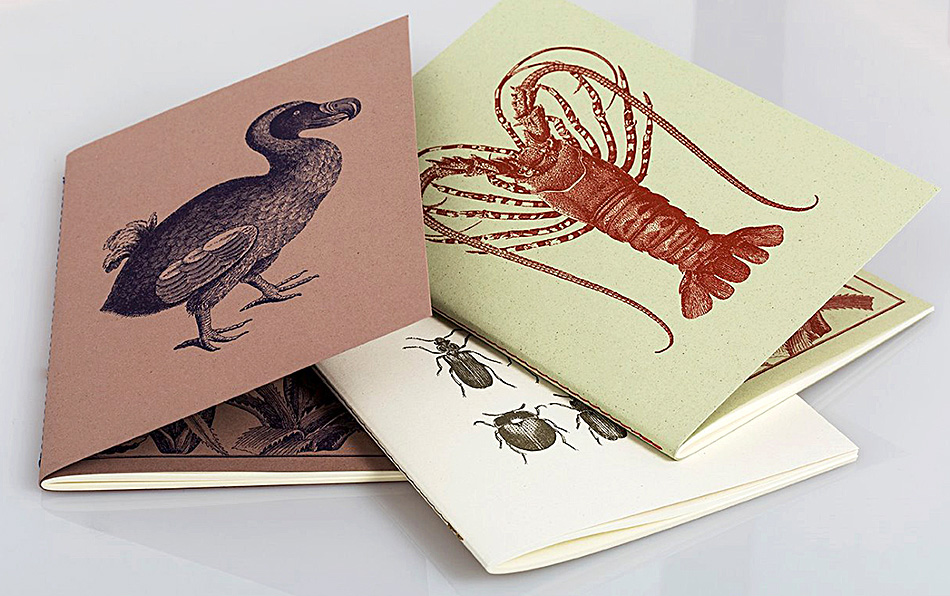 Notebooks Eco Friendly Italian Paper Softcover Stitched Bound