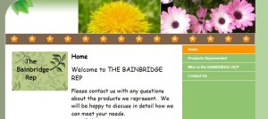 bainbridge rep