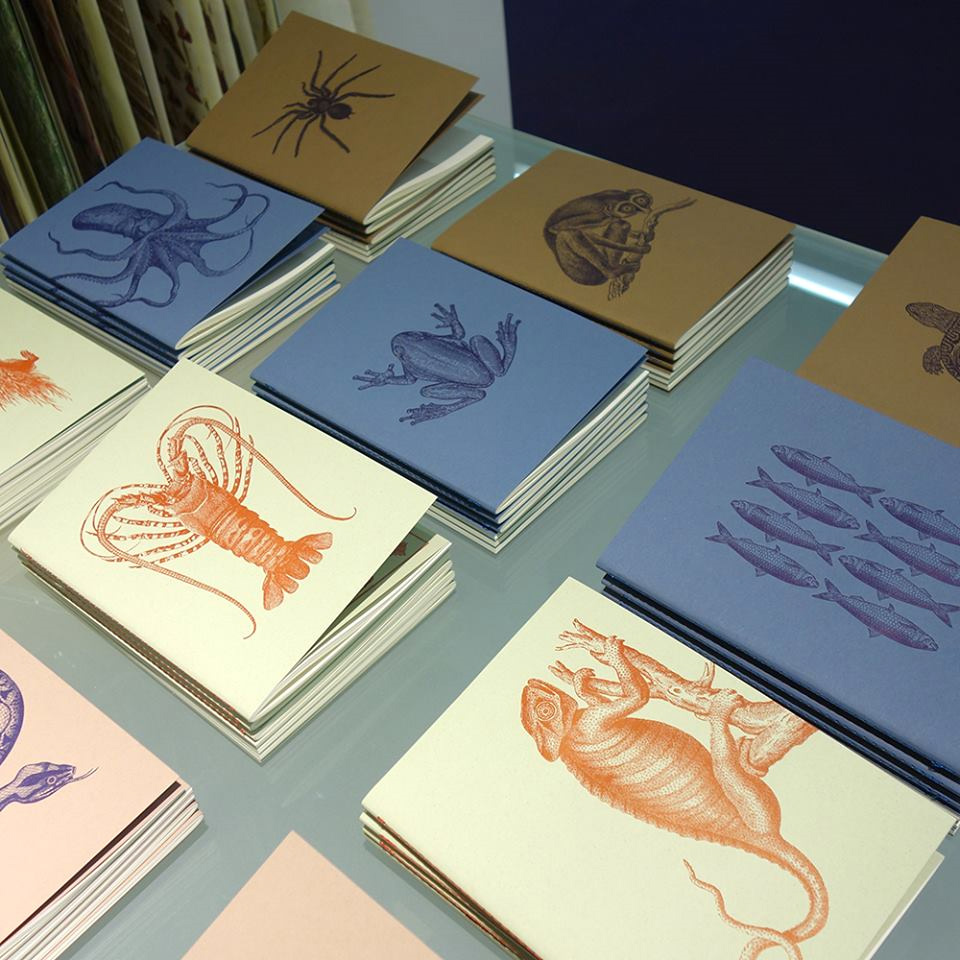 exercise books in classic letterpress colors