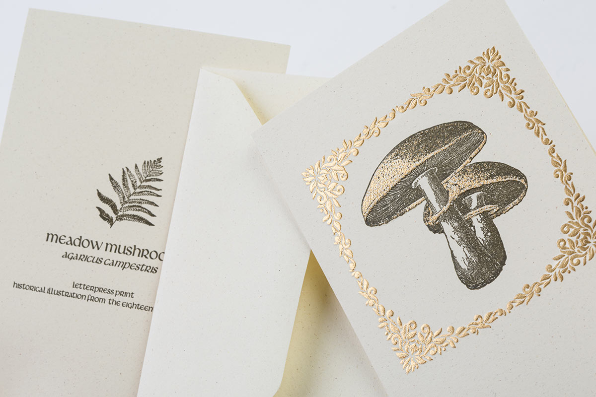 Letterpress double cards envelopes hot bronze foil